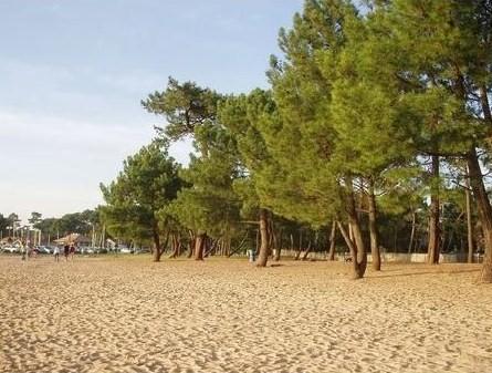 la plage du Betey