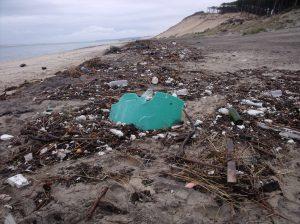 Détritus sur la laisse de mer