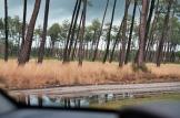 Andernos inondée hiver 2014