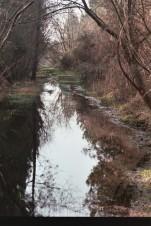 sentier inondé au Communal