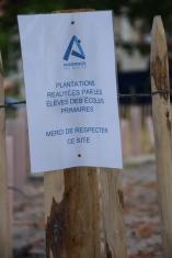 replantations au Bétey 2016