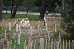 200 pins à arroser