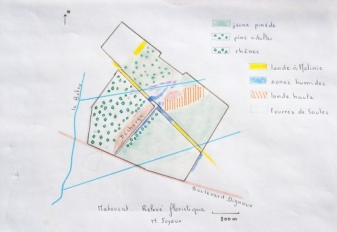 relevé botanique du Communal 2011