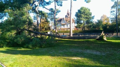 pin tombé en novembre 2016 au Bétey